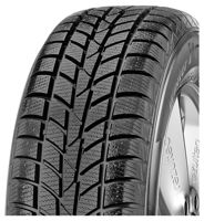 Hankook Winter I*cept Rs W442 Sp